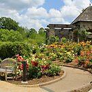 another Rose garden by ANNABEL   S. ALENTON