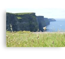 The Cliffs Canvas Print