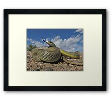 Sea of Scales   Framed Print