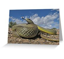 Sea of Scales   Greeting Card