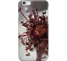 Delicious Purple Passion iPhone Case/Skin
