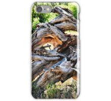 Deadwood on Cherry Creek Trail 4  iPhone Case/Skin