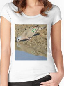Emerald Spotted Dove - African Wild Bird Background - Reflection of Green and Blue Women's Fitted Scoop T-Shirt