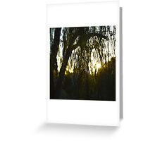 Willow Silhouette Greeting Card