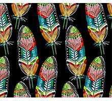 Feathers With A Spirit Photographic Print