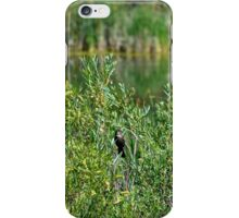 Pond on Cherry Creek Study 2  iPhone Case/Skin