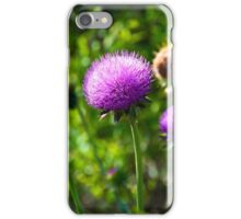 Pink Thistle Study 1  iPhone Case/Skin