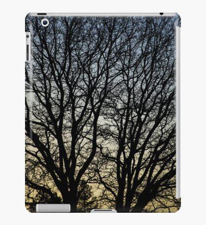 Magestic Tree Closeup iPad Case/Skin