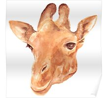 head of Giraffe. watercolor Poster