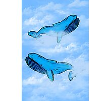 Sky Whales Photographic Print