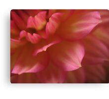 Layered petals Canvas Print