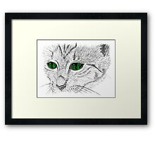 Cat muzzle green eyes Framed Print