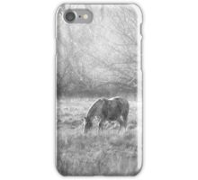 Grazing in the Mist iPhone Case/Skin