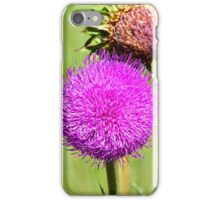 Pink Thistle Study 3  iPhone Case/Skin