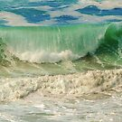 Summer's Perfect Wave by Cee Neuner