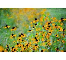 Giverny Revisited Photographic Print