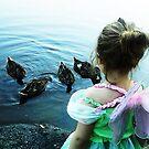 Fairy Ducklings by Lisa Brower