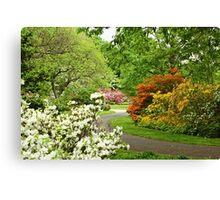 Azalea Gardens - Philadelphia - Pennsylvania - USA Canvas Print