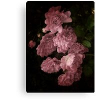 An Abundance of Roses Canvas Print