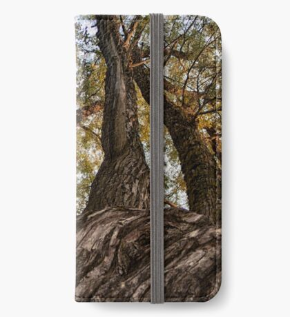 Reaching The Sky (iPhone wallet) iPhone Wallet/Case/Skin