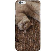 Balls of fur iPhone Case/Skin