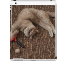 Balls of fur iPad Case/Skin
