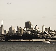 San Francisco Skyline by Dmitry Shuster