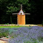 The Windmill Outhouse by DeeZ (D L Honeycutt)