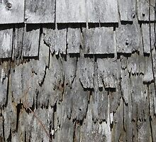 Well Weathered by Martha Medford