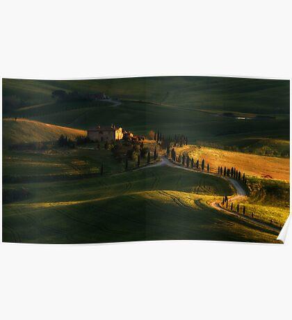Golden fields of Toskany Poster
