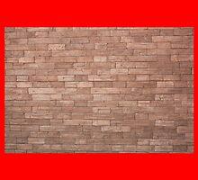 Throw Pillow (BrickWall) by blushutter