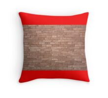 Throw Pillow (BrickWall) Throw Pillow