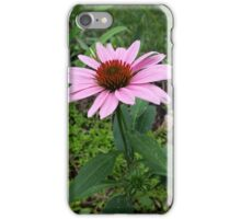 Purple Coneflower iPhone Case/Skin