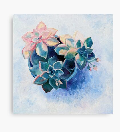 Pastel Succulents - an oil painting on canvas Canvas Print
