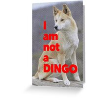 Tom Wheeler is a Dingo Greeting Card