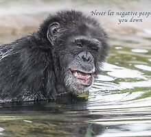 Never Let Negative people bring you Down by Heather Allen