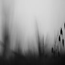 in my dreams III by Victor Bezrukov