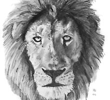 The African Lion  by BruksSketches