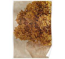 Dried Hydrangea Flower Arrangement  Poster