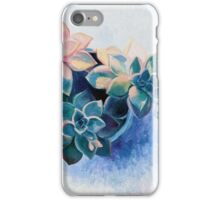 Pastel Succulents - an oil painting on canvas iPhone Case/Skin