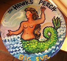 The Hawks Perch, Big Sur by Barbara Sparhawk