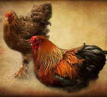 Rooster and hen by steppeland