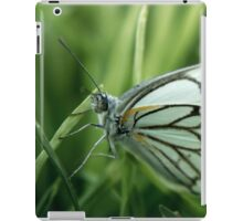 """The grass is my home... """"Brown-veined White butterfly"""" (Belenois aurota) Free State, South Africa iPad Case/Skin"""