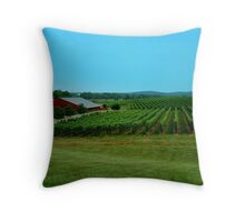 Barboursville Vineyards - Smalltown USA Series   ^ Throw Pillow