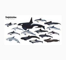 Delphinidae: dolphin family One Piece - Short Sleeve