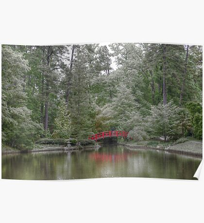 Pond Of Green Trees  Poster