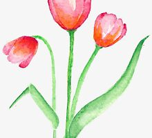 Pink Tulips by Laurie3348