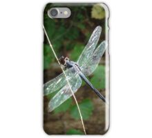 SLATY DRAGONFLY ON SILVER WINGS iPhone Case/Skin