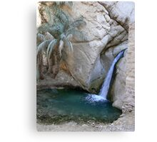 Tozeur waterfall Canvas Print
