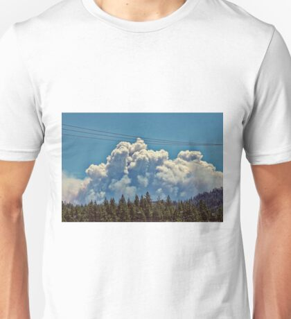 Pine Nuts Fire Unisex T-Shirt